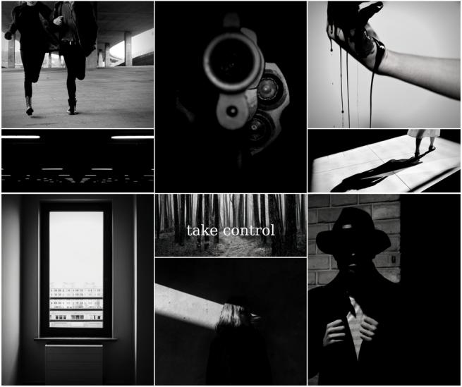 Novelaesthetic_ The Disappearance of Sloane Sullivan