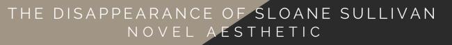 The Disappearance of Sloane Sullivan Novel Aesthetic
