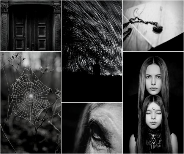 What the Woods Keep by Katya de Becerra (1)
